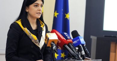 Moldova's Citizenship Program Has Received 23 Applications so Far, State News Agency Reports