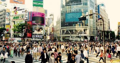 On Japanese Citizenship and Naturalization Policies and How They May Change