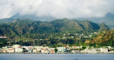 25% of Dominica's GDP and Half of Govt. Revenue to Come From CIP This Year