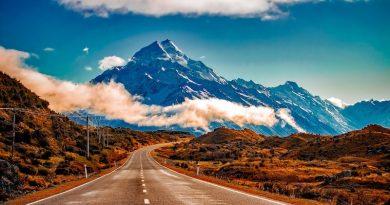 Q1 Figures Indicate NZ Investor Visa Program in Decline – Rejections Hit 43%