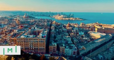 As Malta Plans to Renew the IIP in 2020, Which Changes Should We Expect?