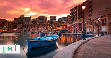 Why Malta's IIP and RVP Should Allow Participants to Own Investments Indirectly, Through Trusts or Foundations