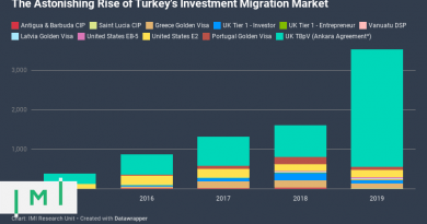 What Explains the Astonishing Growth of Turkish Investment Migration?