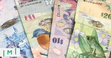 Caribbean: EU Adds Dominica to Tax Blacklist, Bermuda Introduces $2.5m Golden Visa